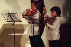 Violinisiti